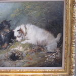 George Armfield (British, 1810-1893) Terriers ratting