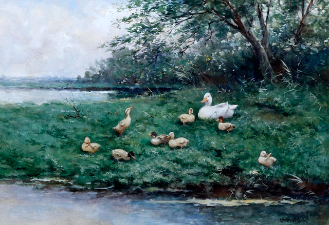 Constant Artz (Dutch, 1870-1951) Duck and ducklings on a grassy river bank