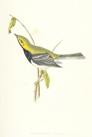 BREE (CHARLES ROBERT) A History of the Birds of Europe, Not Observed in the British Isles, 4 vol., 1863-1864