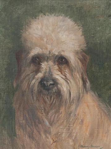John Murray Thomson, RSA RSW PSSA (British, 1885-1974) 'Toby' A Dandie Dinmont Terrier