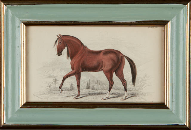 A set of twenty eight late 19th century prints of horses