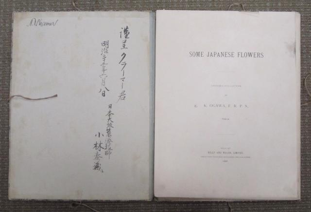 'Some Japanese Flowers' Dated 1897