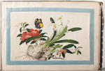 An album containing seven Chinese rice paper paintings and a group of Japanese prints,
