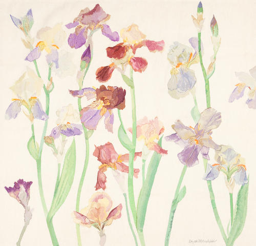 Dame Elizabeth Blackadder, OBE RA RSA RSW RGI DLitt (British, born 1931) ' Irises II '