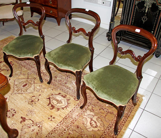 A set of six late Victorian rosewood balloon back dining chairs