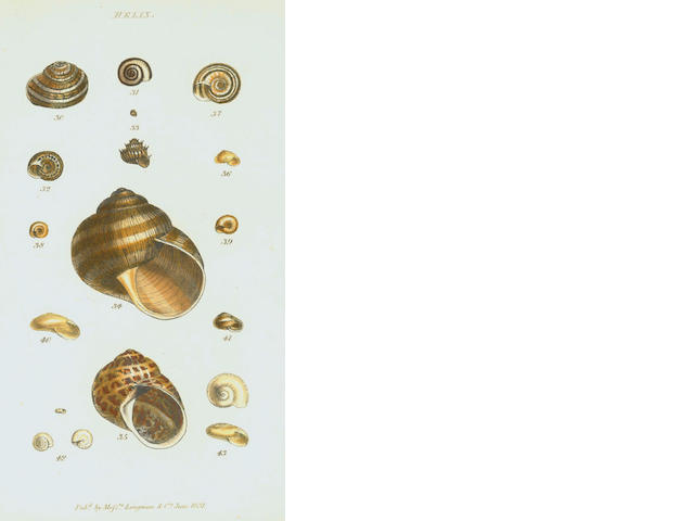TURTON (WILLIAM) A Manual of the Land and Fresh-Water Shells of the British Islands, 1831; and 26 others, also natural history (27)