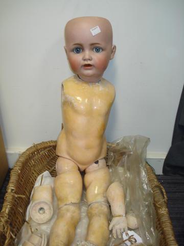 Large J.D Kestner 260 bisque head toddler