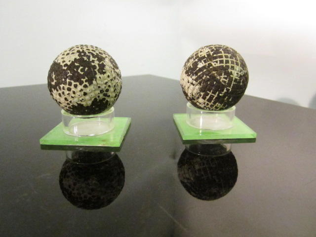 Two gutta-percha golf balls circa 1890s