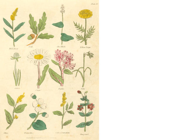 CULPEPER (NICHOLAS) Complete Herbal, 1823