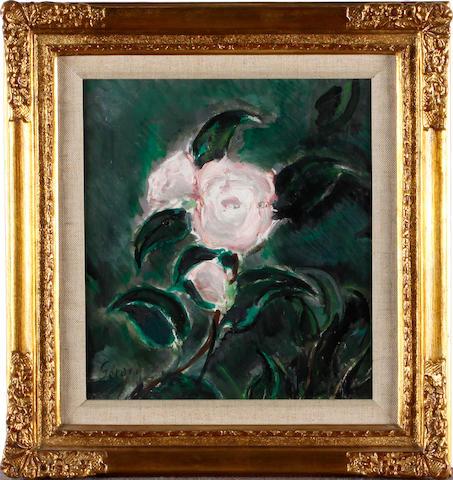 Rolf Gerard Pink rose