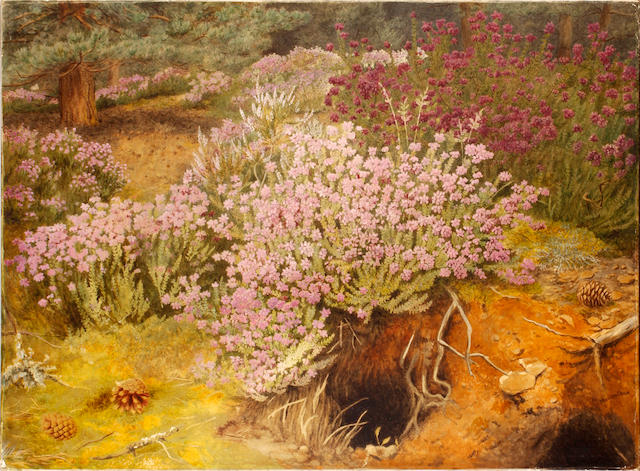Marian Chase (British, 1844-1905) Heather bank