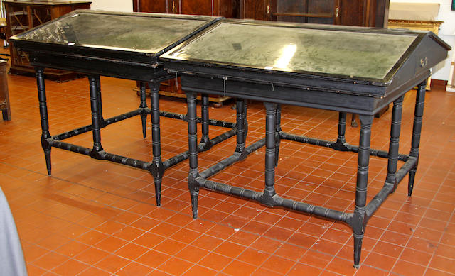 A pair of late Victorian ebonised, framed museum specimen display cabinets,
