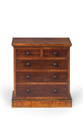 A 19th century Australian miniature cedar and casuarina cross-banded apprentice chest