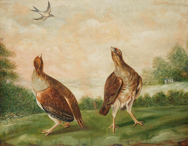 Circle of Stephen Elmer (Farnham 1715-1796) Two partridge looking at a swallow
