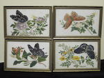 A collection of rice paper paintings 19th century