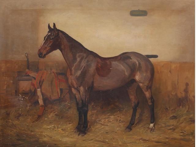 Alfred Grenfell Haigh (British, 1870-1963) Chestunt hunter in a stable