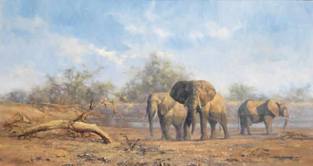 David Shepherd, O.B.E. (British, born 1931) 'Evening in the Luangwa'