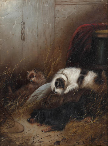 George Armfield (British, 1810-1893) Terriers in an interior, and Terriers sleeping in a barn (a pair) (2)