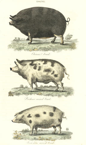 DICKSON, R.W. Practical Agriculture; or, A Complete System of Modern Husbandry: with the Methods of Planting, and the Management of Live Stock, 2 vol., 1805