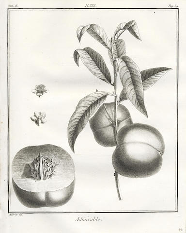 DUHAMEL DU MONCEAU (HENRI LOUIS) Traité des arbres fruitiers; contenant leur figure, leur description, leur culture, vol. 2 only, 118 plates, 1768