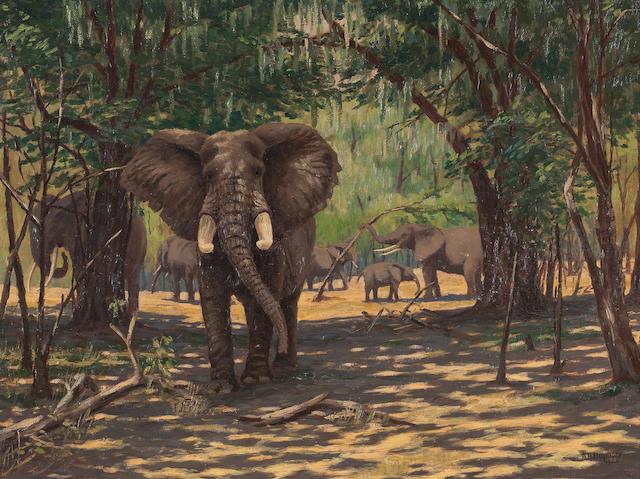 Arthur Radclyffe Dugmore (American, 1870-1955) Elephants in Kenya 43 x 60cm