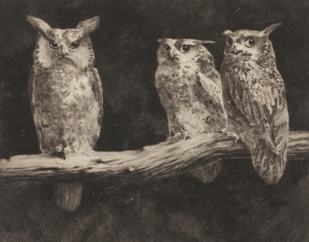 Leonard Robert Brightwell (British, born 1889) Owls