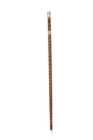 A Victorian snake skin walking stick,