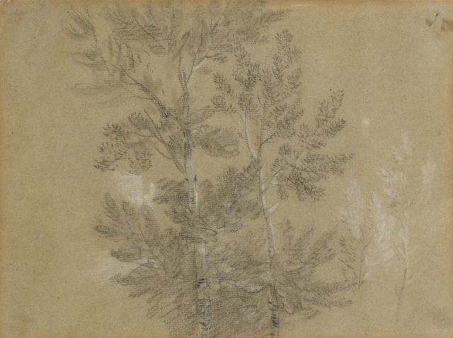 Thomas Gainsborough, R.A. (Sudbury 1727-1788 London) A study of trees