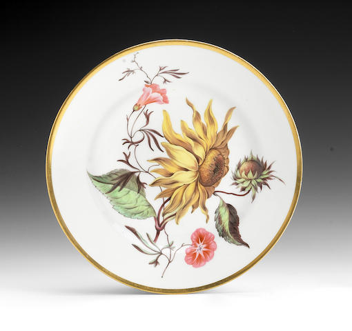 Another fine Derby botanical plate, circa 1813-1815
