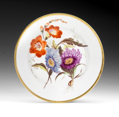 A fine Derby botanical plate, circa 1813-1815
