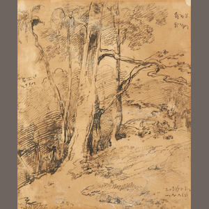 George Chinnery (1774-1852) Study of trees in India