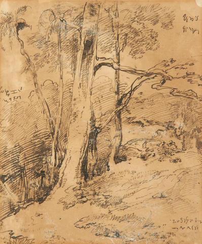 George Chinnery RHA (British, 1774-1852) Study of trees in India