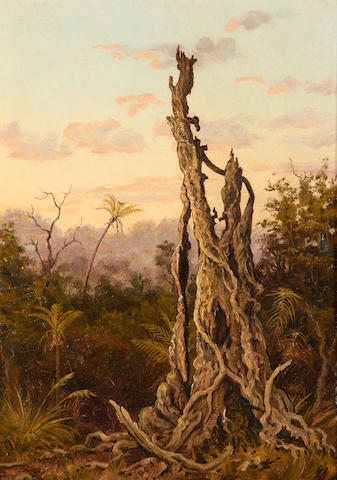 Charles Gordon Frazer (British, 1863-1899) Rata Tree, New Zealand