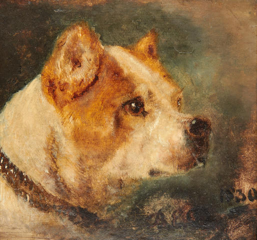 English School, 19th century Pair of studies of a fox and terrier,
