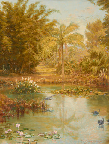 Charles Gordon Frazer (British, 1863-1899) Black swans in a tropical lake, Australia