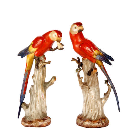A pair of Meissen models of parrots.
