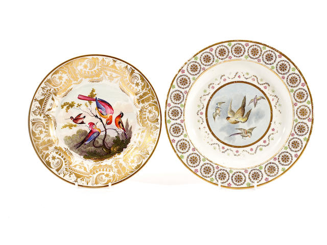 A very rare Derby plate painted with birds and another in the style of Richard Dodson, circa 1800-1820