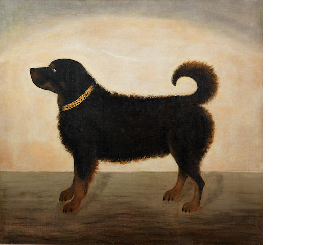 English School, 19th century A profile picture of a Retriever**********