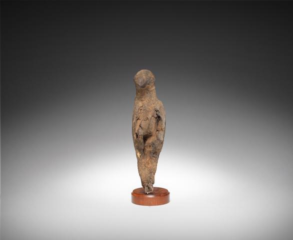 An Egyptian mummified falcon