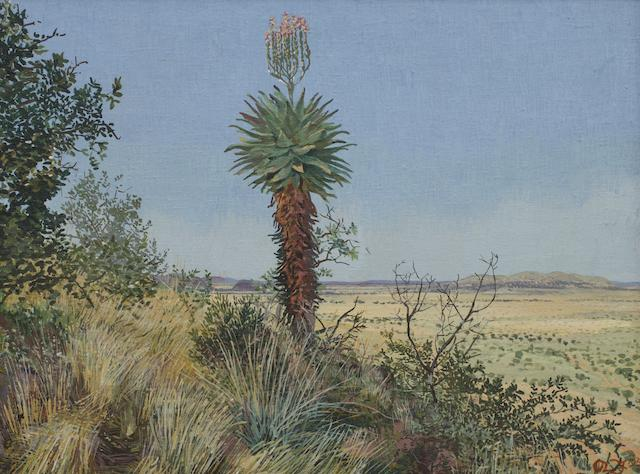 Adolph Stephan Friedrich Jentsch (German, 1888-1977) Aloe in bloom