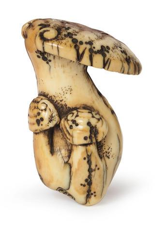 An unusual ivory netsuke of a reishi fungus By Ozaki Kokusai (1835-1892), Shiba, Tokyo, 19th century