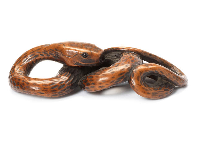 A boxwood netsuke of a coiled snake By Tanri, 19th century