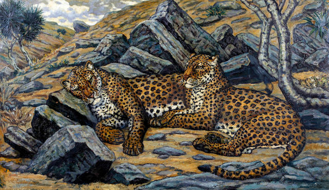 J. C. Wardle, (20th Century) Leopards