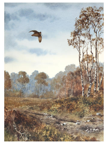 Rodger McPhail (British, born 1953) Woodcock in a Landscape