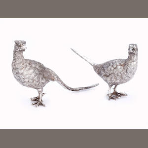 A pair of silver pheasants