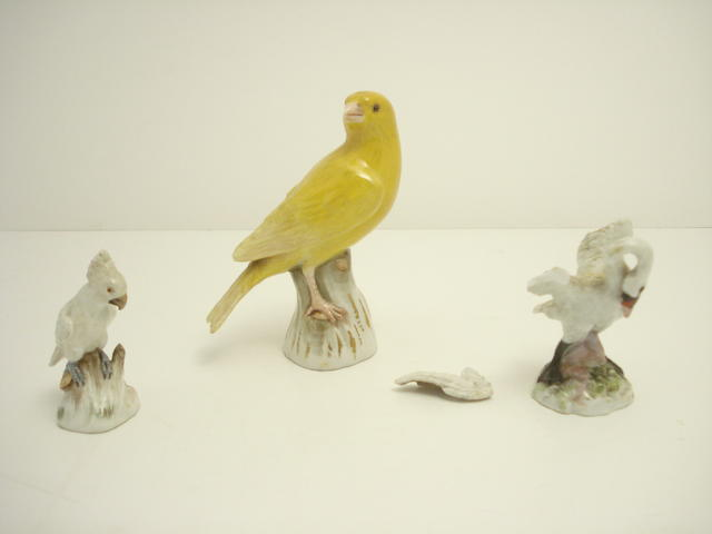 Three Meissen bird figures 19th century