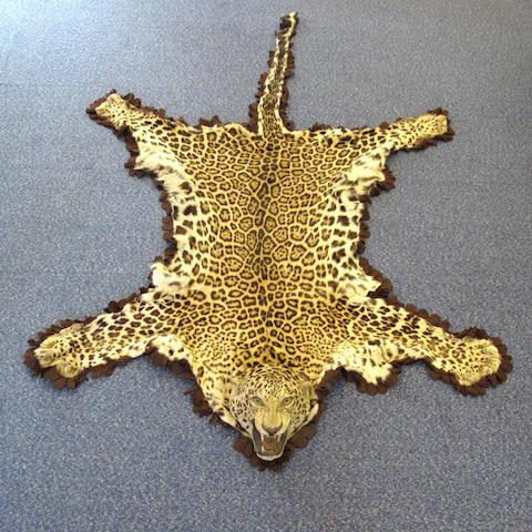 A leopard skin