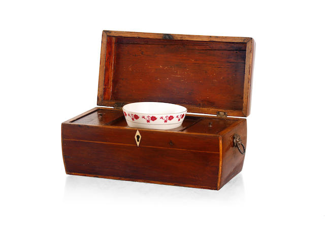A 19th century casuariana and pine strung tea caddy
