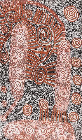 Yumpululu Tjungurrayi (born circa 1925-1998) Wonghonyon - Bush Tucker Dampers