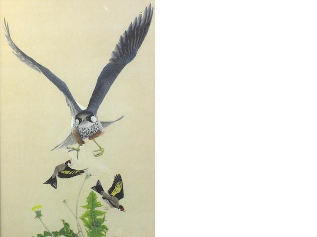 Jonathan Sainsbury, (20th century) Peregrine falcon and gold finches